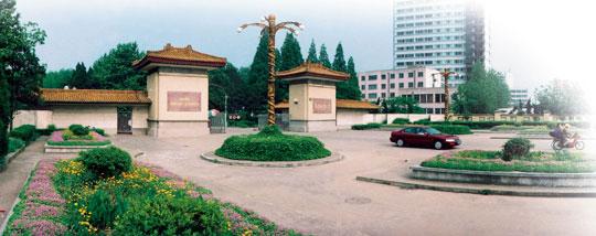 >> 南京林业大学